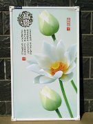 金满娱乐下载碳晶墙nuan荣誉出品富贵荷花3D立体图案全新shijue感受电nuan画